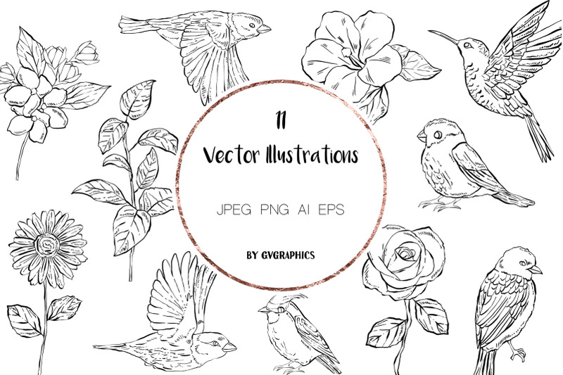 11 Hand Drawn Vector Flowers and Birds.
