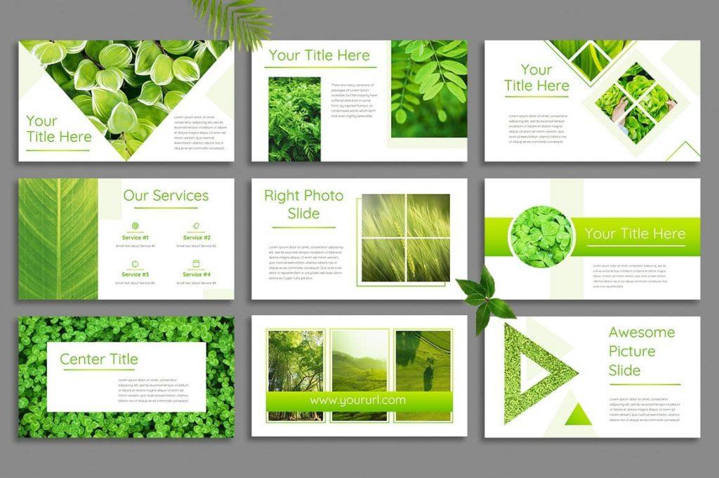 100+ Unique Leaf Slides - Powerpoint Template.