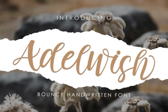 Adelwish is a cute and casual handwritten font with an incredibly friendly feel.