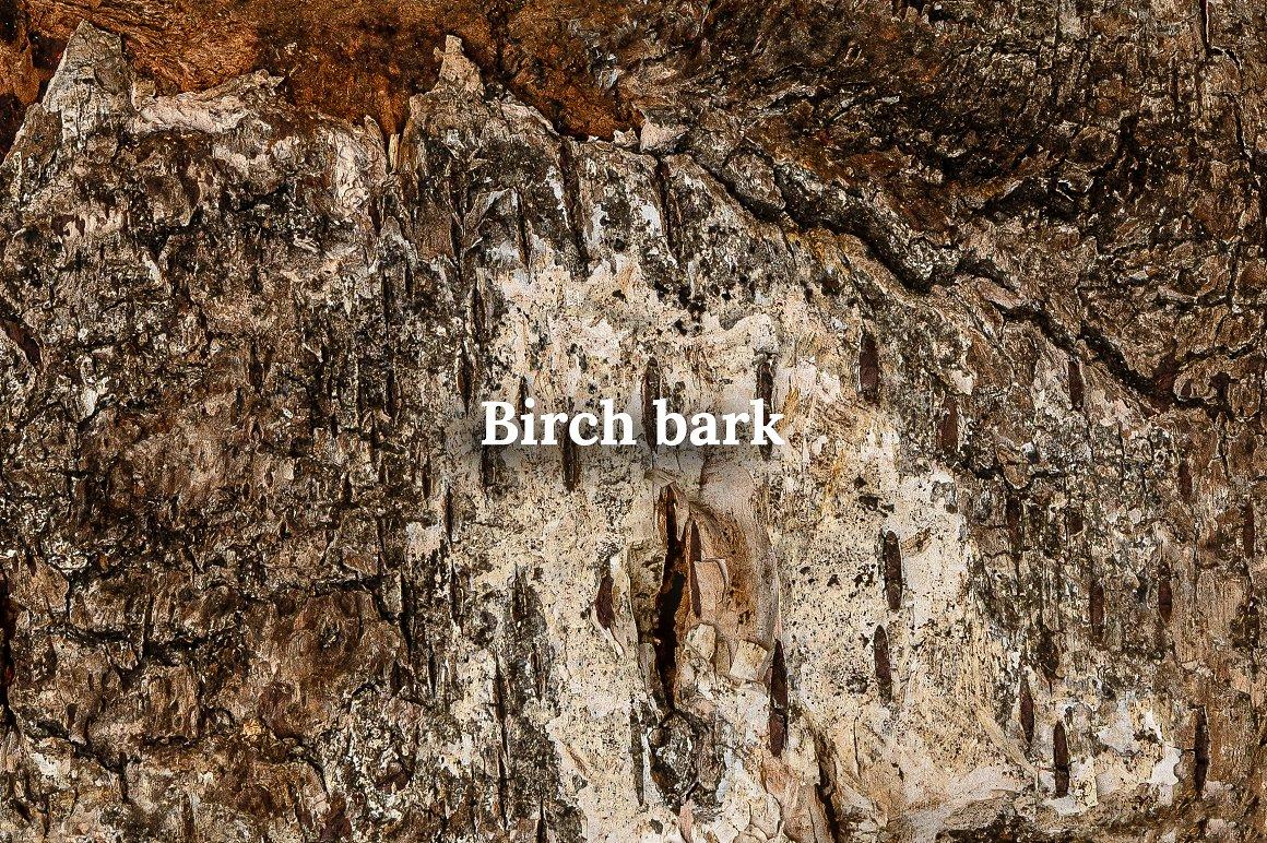 Fall Leaves Scene Creator birch texture/