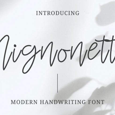 Mignonette Handwriting Font Facebook Collage Image by MasterBundles.
