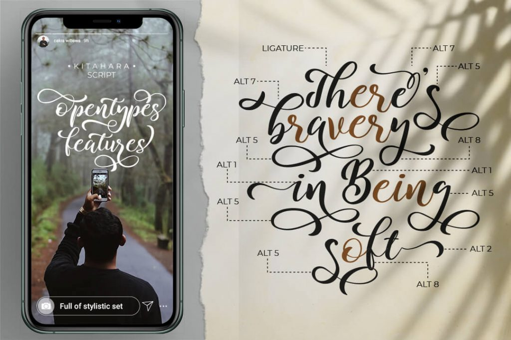 Instgram Stories Preview with Modern Script Font.