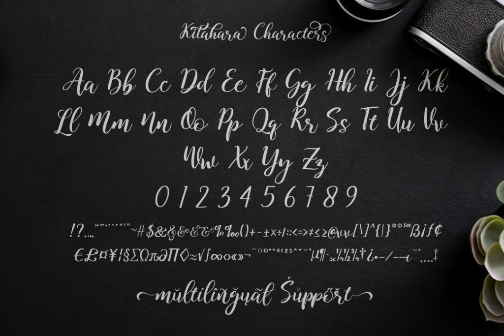 Modern Script Font Characters Preview.