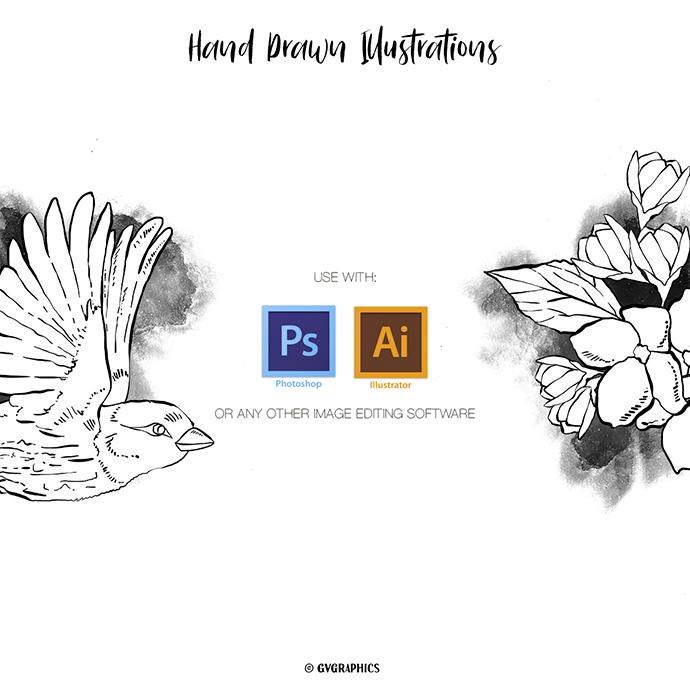 Preview 11 Hand Drawn Vector Flowers and Birds Availabel Programs.