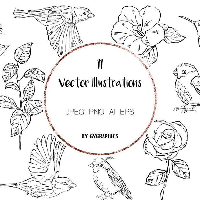 Preview 11 Hand Drawn Vector Flowers and Birds.