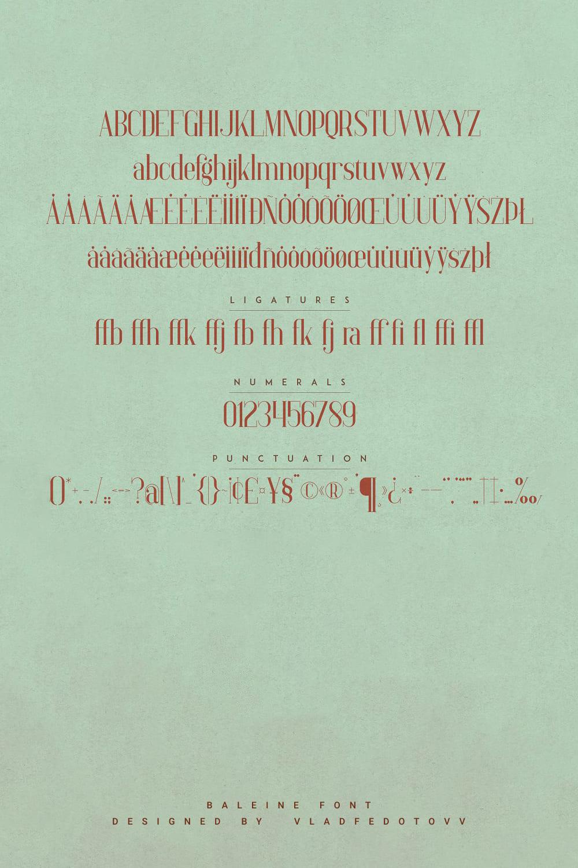Baleine – Slab Serif Font 4 weights Pinterest Previews.