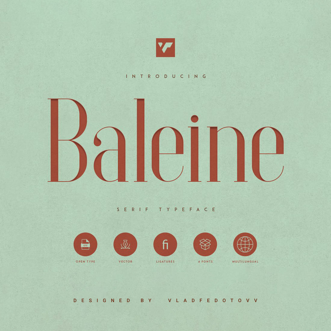 Baleine – Slab Serif Font 4 weights Preview images.