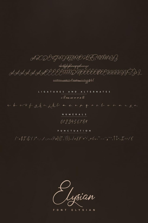 Elysian Tattoo Script Font Preview image.