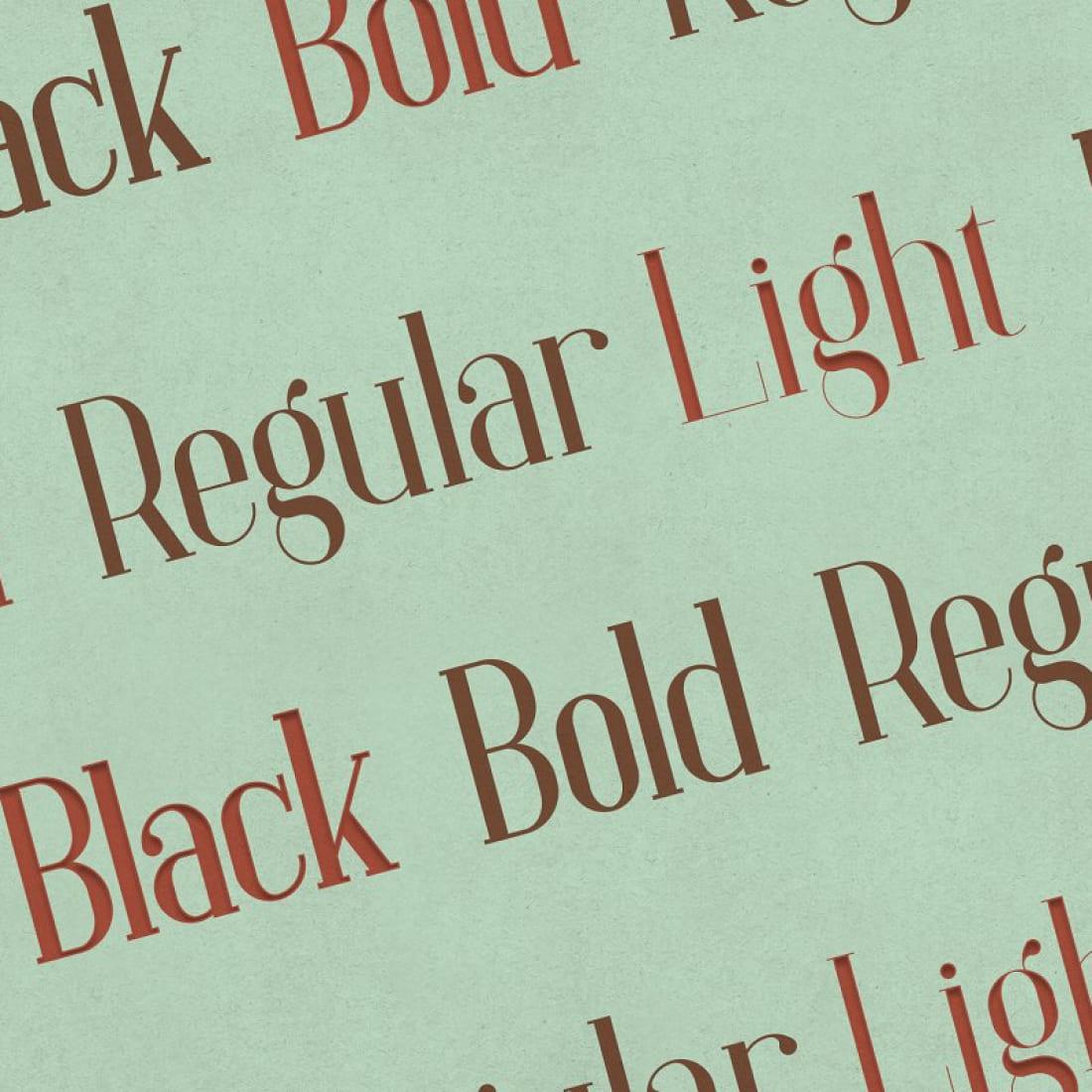 Baleine – Slab Serif Font 4 weights cover image.