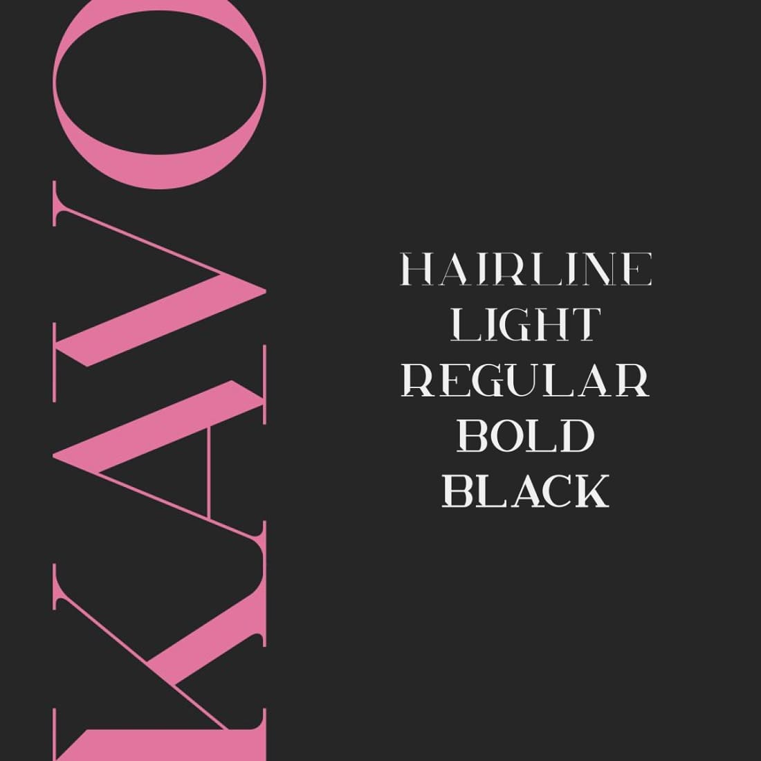 Kavo Styled Serif Typeface Family 5 fonts 1100 x 1100preview images.