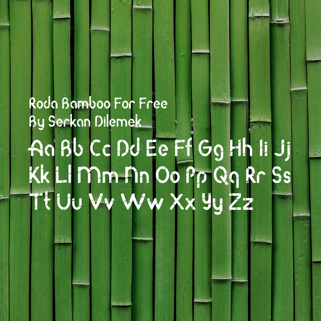 Free Bamboo Font Alphabet Example Cover.
