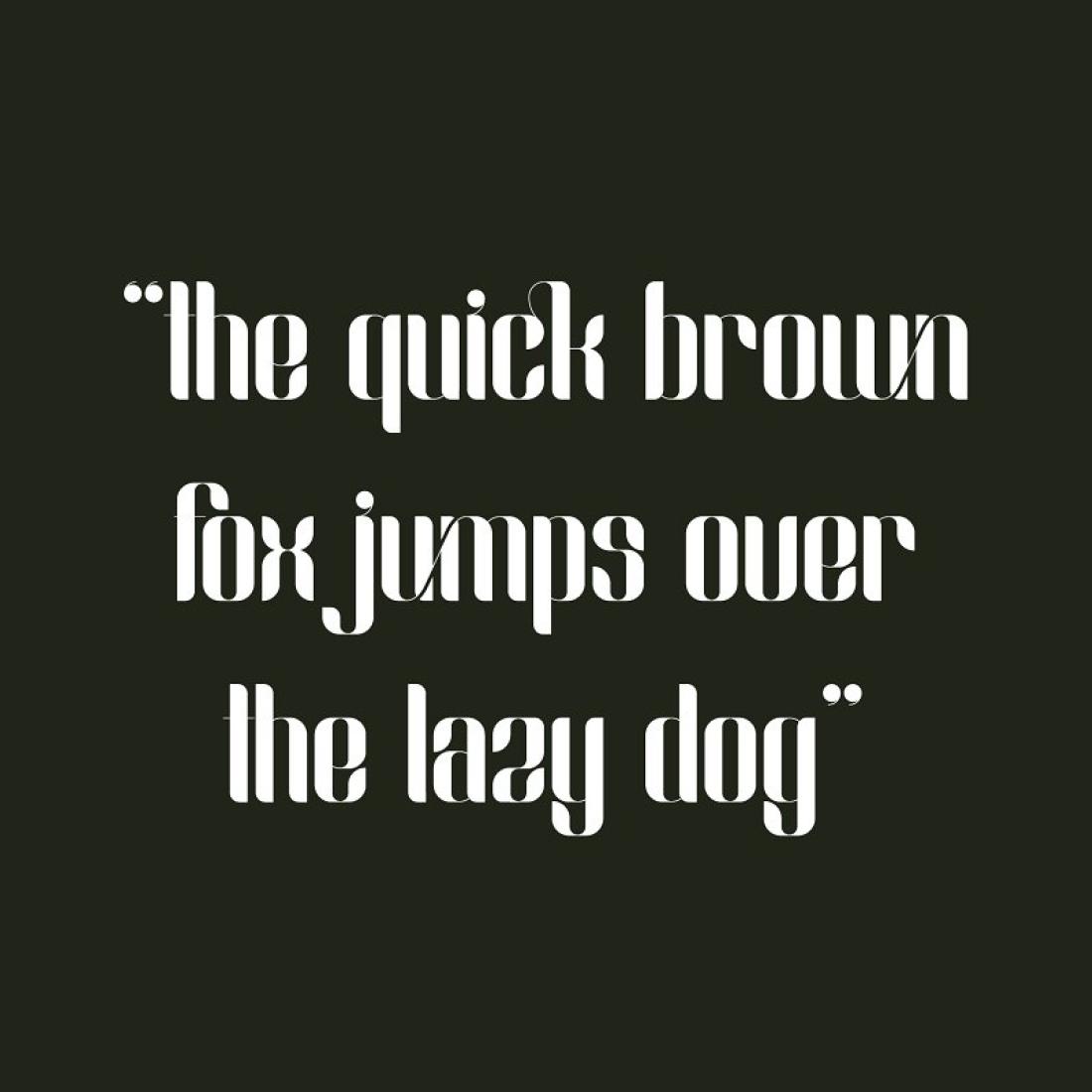 Slang – Classic Ligature Font cover image.