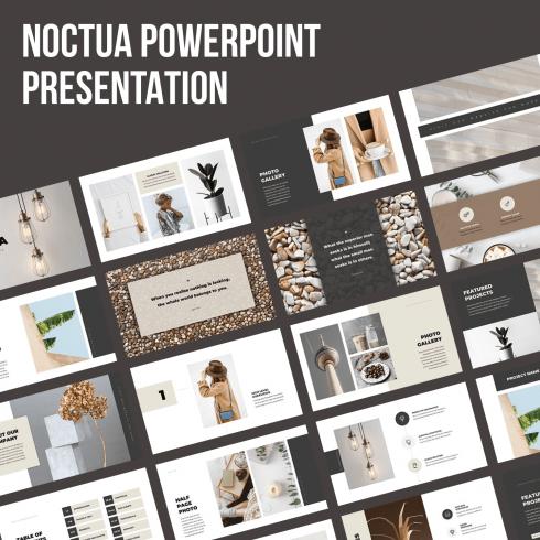 Noctua PowerPoint Presentation by MasterBundles.