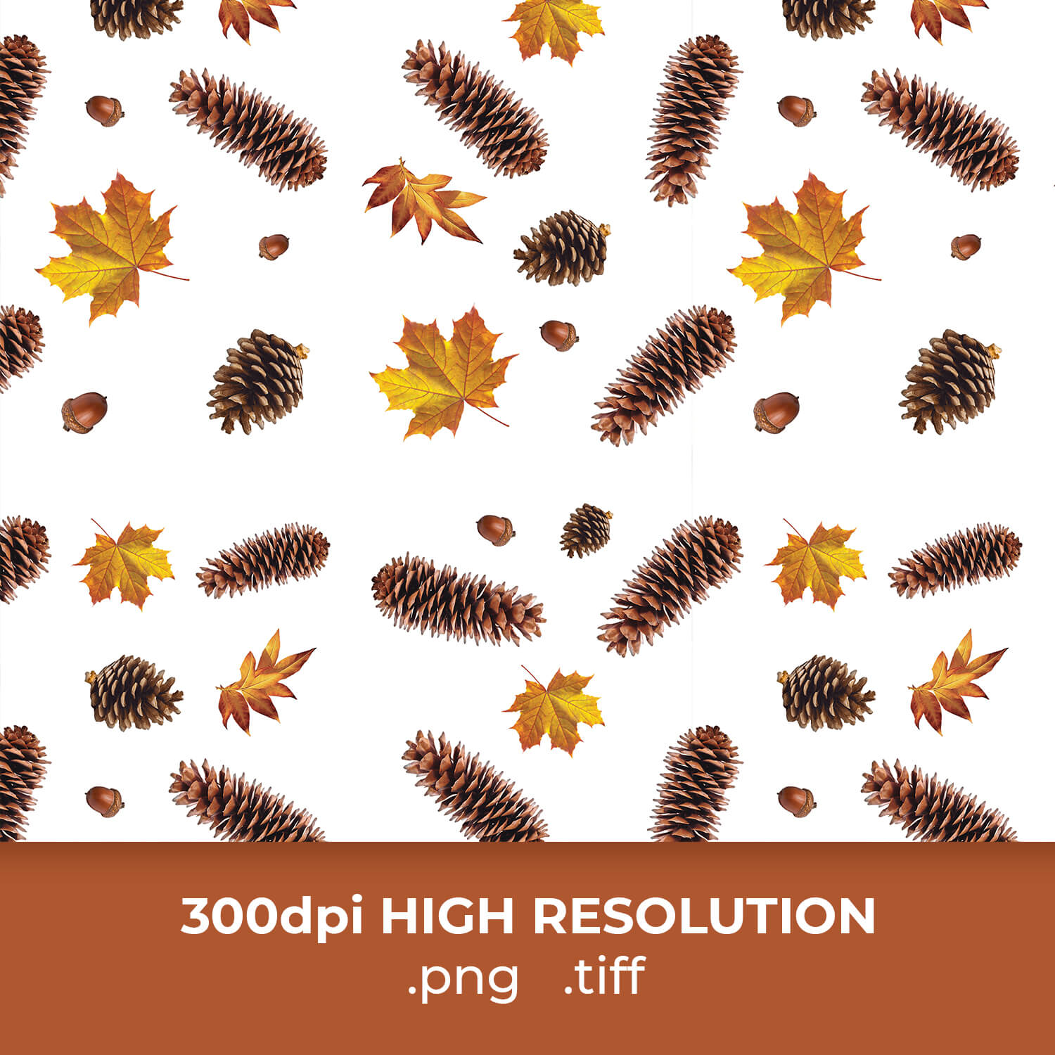 Fir Cones Thanksgiving Pattern cover image.