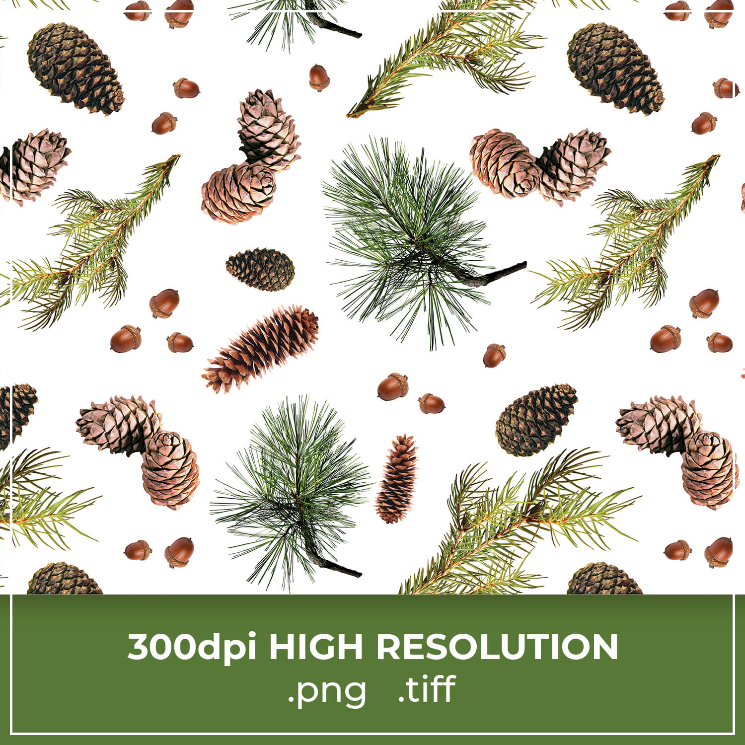 Free Pine Cone Pattern cover image.
